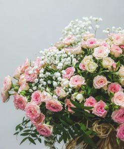 vista aumentada de las rosas de pitiminí