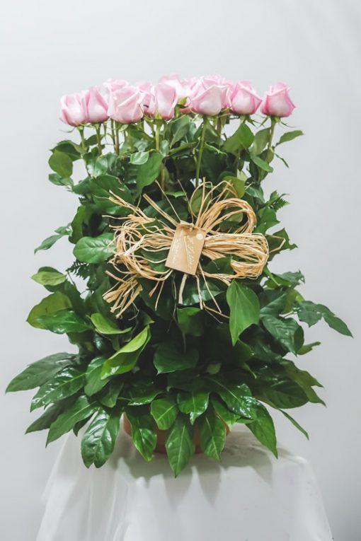 La imagen muestra el centro de rosas rosas en paralelo con 25 rosas